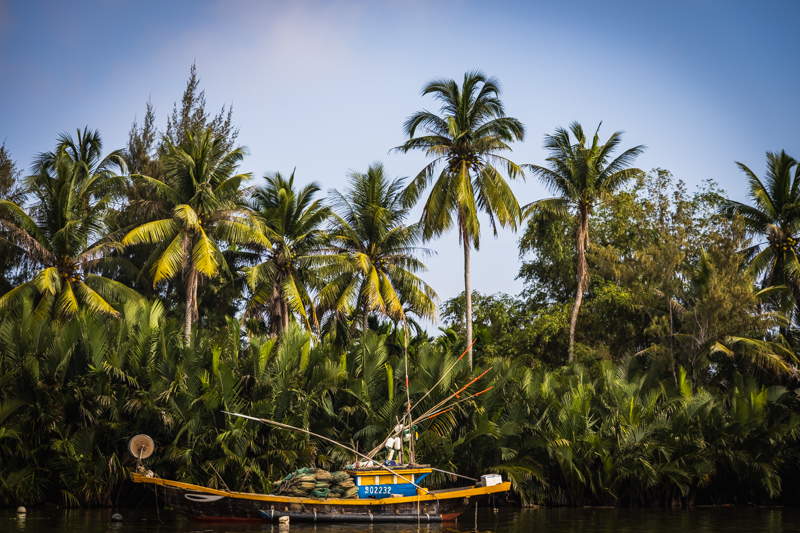 Fisherboat & Palms | Hội An, Vietnam by Robert Metz