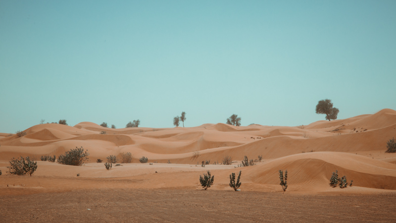 A Desert Scenery | Dubai, UAE by Robert Metz