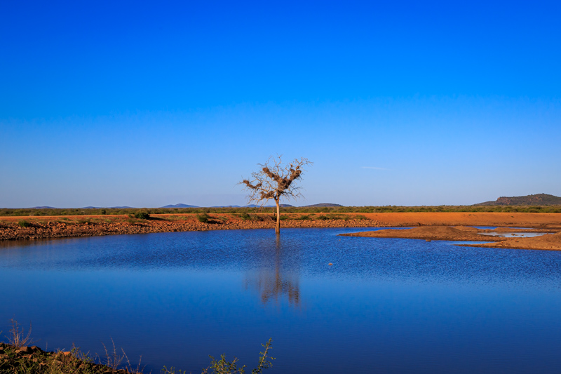 Deep Blue Lake | Madikwe Game Reserve, South Africa by Robert Metz